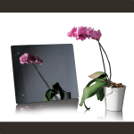 produktfotografie_mirage